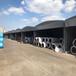 徐州電動推拉雨棚效果圖抗風10級,推拉雨棚倉儲雨棚移動雨棚
