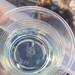 麗水中石化柴油品種繁多