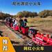 百美騎乘式軌道小火車,定做百美軌道小火車服務至上