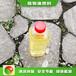 大同新榮區無醇植物油燃料新型植物油燃料燃料好用嗎