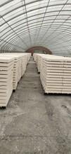 紅橋定做聚合物硅質板勻質板質量可靠,廊坊勻質板圖片