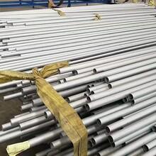 吉林進口天津不銹鐵鋼管服務周到,3CR13圖片