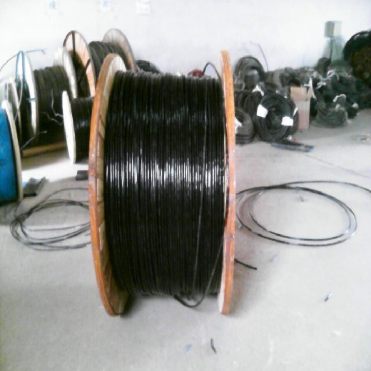 定制鐵路信號電纜PTYV22規格