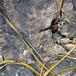 修路石頭太硬靜態破裂設備,液壓劈裂棒
