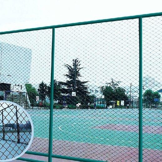 萍鄉牢固運動場圍網信譽,體育場圍網