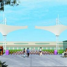 上海遮陽膜結構門頭好處,膜結構門頭及通廊系列圖片