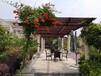 西湖區庭院設計效果圖,設計別墅效果圖