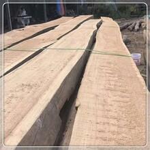 云南老榆木板材廠家圖片