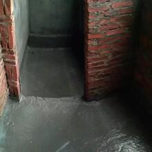 惠州仲愷專業衛生間防水補漏質量可靠,衛生間漏水處理
