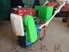 高產量手提蔬菜播種機,汽油播種機