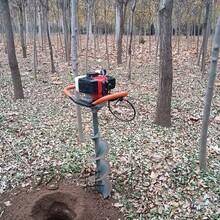 專業生產汽油機挖坑機,植樹挖坑機圖片