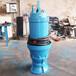 大中型潛水軸流泵成套設備