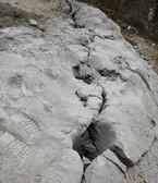 黑龙江煤矿开采岩石劈裂机劈裂棒,裂石棒