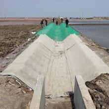 靖边县浇水固化水泥毯-护坡水渠蓄水池水泥毯,帆布毯图片