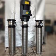 脫硫塔耐腐蝕酸堿腐蝕性液體不銹鋼立式水泵