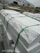 庭院大方形石材鋪裝效果圖圖片