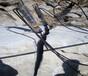 硬石頭破碎不能放炮有什么方法開采石頭的設備,劈裂機