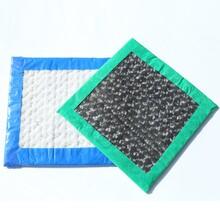石家莊膨潤防水毯廠家供應,膨潤防水毯多少錢一平圖片