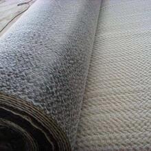 四川供應膨潤防水毯型號,膨潤防水毯多少錢一平圖片