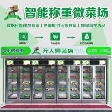 柳州生鲜柜-无人生鲜售货柜,无人生鲜果蔬售货柜图片