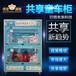 悟空遛娃共享童车柜,西藏智能儿童电动车共享柜悟空遛娃童车柜模式