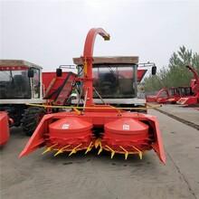 辽宁自走式收获机供应商图片