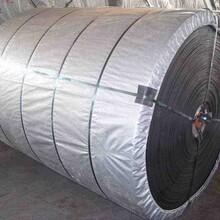 長沙PVC輸送帶廠家圖片