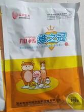華中牧大電解多維,華中牧大加鈣維之冠孕畜能用嗎圖片