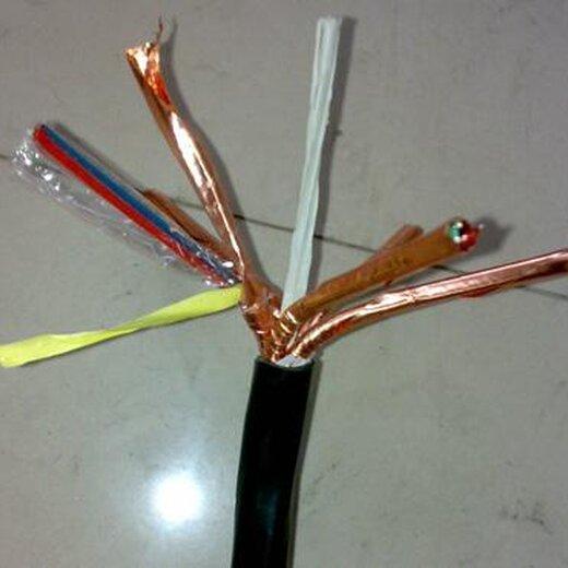 定做計算機電纜DJYPV(1X30)設計合理