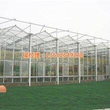玻璃温室价格吐鲁番玻璃温室玻璃温室建设