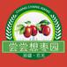 新疆大红枣好不好