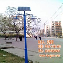 山东太阳能庭院灯泰安万光照明4米太阳能庭院灯图片