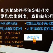 广西南宁直销软件开发_级差制直销软件开发哪家强_软件开发周期短