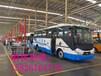东风超龙6米9米A1B1照教练车厂家直销价格全国可送车上门
