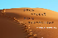 北京标书制作公司哪家好工程服务采购电子标等