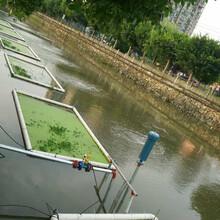 生态治水--黑伟沉水式鼓风机