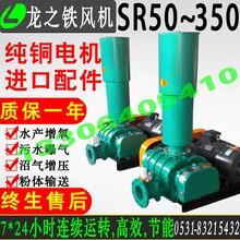 TSR80型4kw罗茨鼓风机价格章丘风机厂家