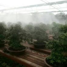 西安喷雾降温步行街广场降温系统