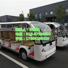 致尚伟业在线咨询_北京电动观光车_游乐园电动观光车