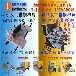 儋州全自动木工带锯跑车立式木工带锯机