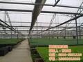 日光温室大棚造价建发温室建设图日光温室大棚图片