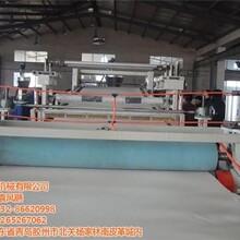 朗逸塑机在线咨询_pvc板材生产线_胶州pvc板材生产线