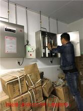 青岛餐厅厨房自动灭火系统青岛灶台自动灭火系统