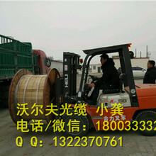 秦皇岛沃尔夫线缆全介质自承式光缆ADSS厂家图片
