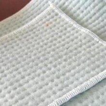 乐昌防水毯厂家直销股份有限公司各种工地施工材料