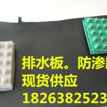 新闻联播:赣州防穿刺排水板-型号齐全-