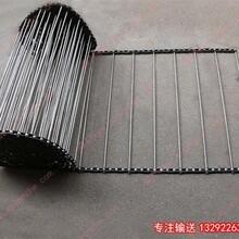 食品机传动网带_仙桃传动网带_粉条蒸煮机传动网带