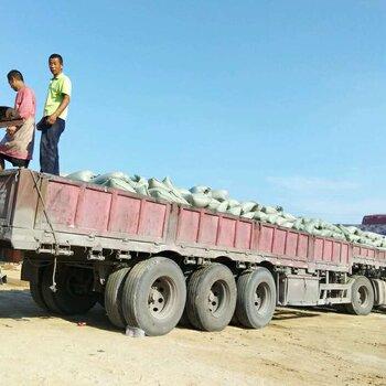 灵寿县永龙石粉厂