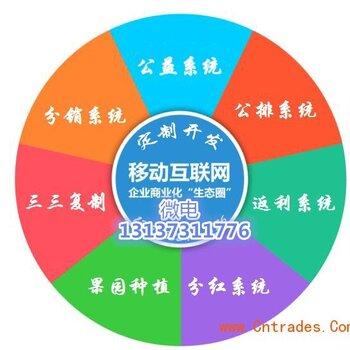专业商城软件系统开发定制