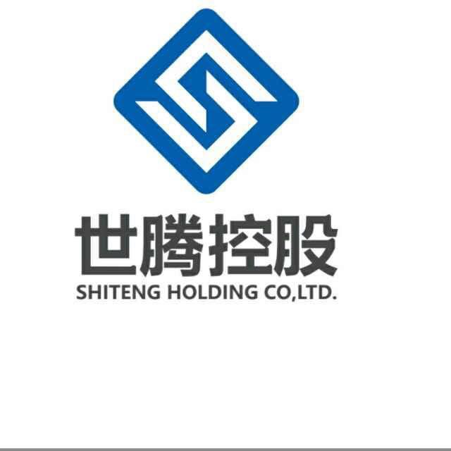世腾控股有限公司